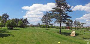 Budowa pola golfowego w Kamieniu Śląskim / galeria pól golfowych - pielęgnacja i koszenie trawy na dołku 12 podczas budowy.